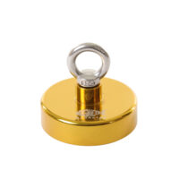 gouden vismagneet (2)
