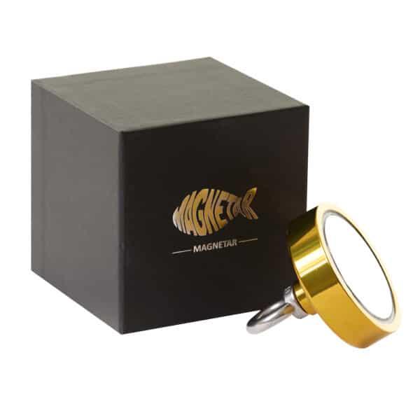 gouden vismagneet
