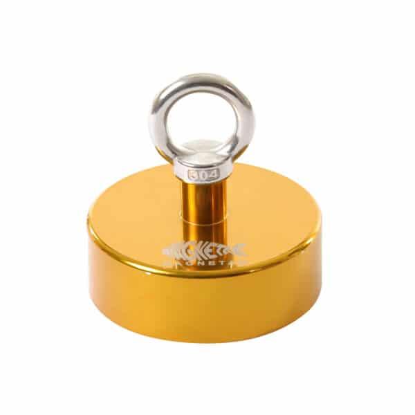 goud vismagneet